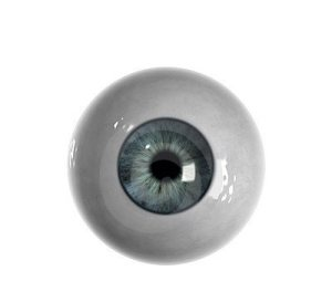 blue-eyeball-no-veins-visible-9589854
